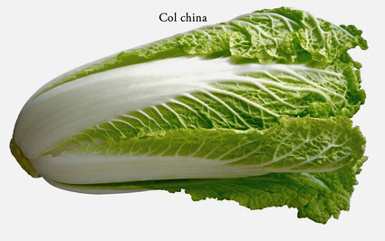 hakusai-col-china-chinese-cabbage
