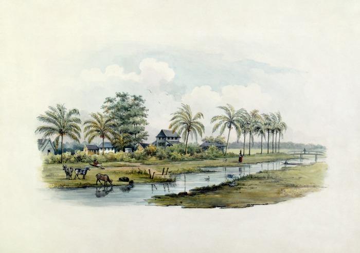 lossy-page1-700px-Tropenmuseum_Royal_Tropical_Institute_Objectnumber_1138-7_Riviergezicht_met_gebouwen_van_een_kato2.tif